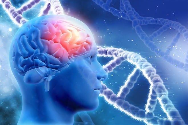 Comment augmenter la capacité de son cerveau ?